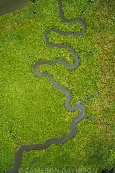 Aerial photograph of the Chickahominy River Marshes