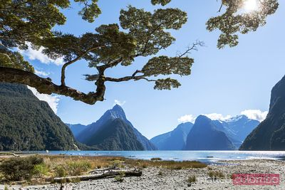 Famous Milford Sound in a sunny day with blue sky, New Zealand