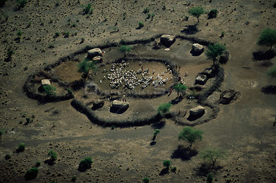 Aerial view of village huts and livestock in enclosure, Crater Highlands, Ngorongoro conservation area, Tanzania.