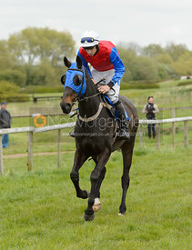 Race 3 Mens Open - Quorn Gold Cup - The Quorn Point-to-Point 2017