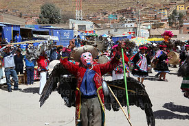 Man wearing a mask and dead Andean condor (Vultur gryphus) dancing with suri sikuris group at Chutillos festival, Potosí, Bol...