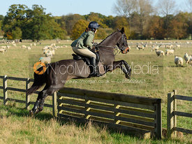 jumping a hunt jump near Temple Hill - Fitzwilliam Opening Meet 2016