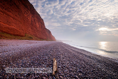 The beach at Budleigh Salterton - BP1333