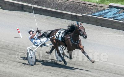 Hambletonian-2711_August_07_2010_