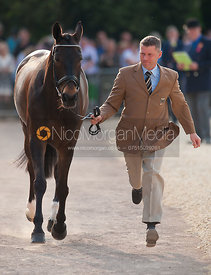 Andreas Dibowski (GER) and FRH Fantasia