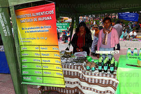 Stall with poster listing vitamins found in coca leaves at trade fair promoting alternative coca leaf products , La Paz , Bol...