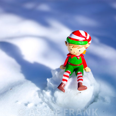 Christmas Elf on snowball