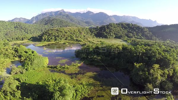 Aerial shot over a wetland area of the Atlantic Forest, Reserva Ecologica de Guapiacu, Rio de Janeiro, Brazil, 2015.