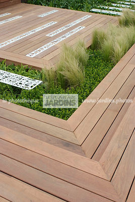 Buxus, Contemporary garden, Common Box, Wooden Terrace, Digital, Grasses