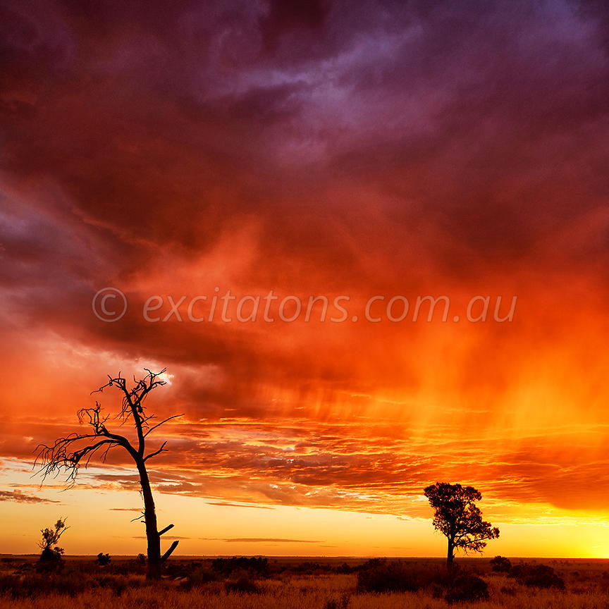 Dramatic Summer sunset, Mildura, Australia