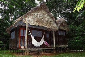 Cabin at Chalalan ecolodge , Madidi National Park , Bolivia