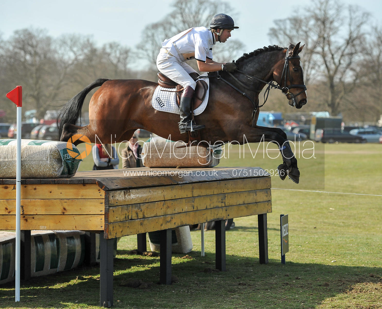 Harry Meade and WILD LONE - Belton Horse Trials 2012