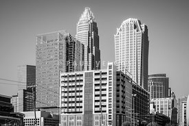 Charlotte North Carolina Black and White Photo