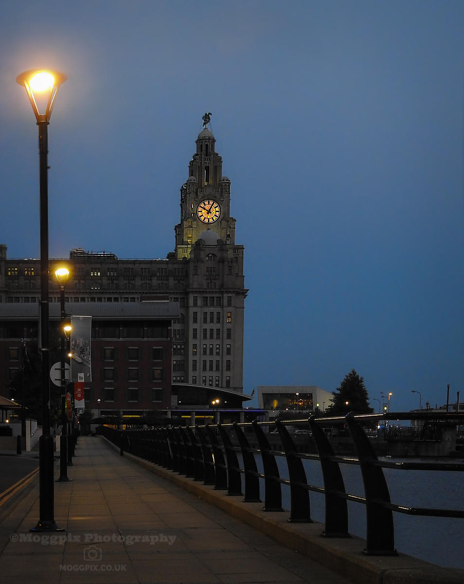 A Liverpool Path At Night