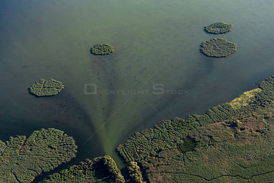 Aerial view of Danube Delta, the second largest wetland in Europe and the largest reed bed in the world, showing reed islands...
