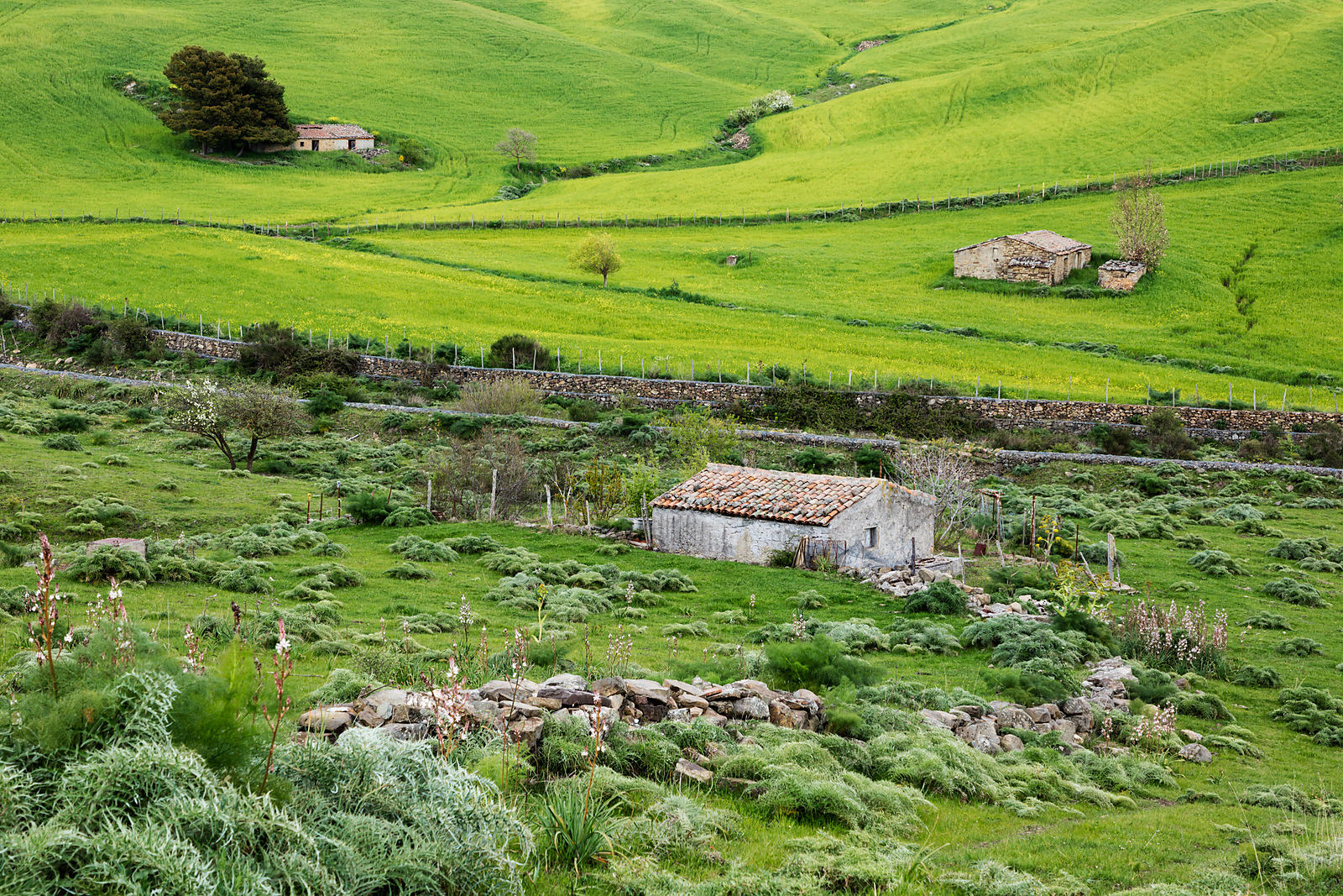 Rolling Green Hills and Stone Cottages