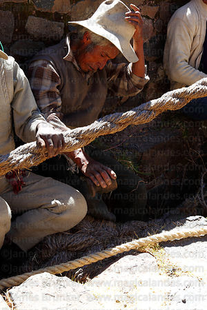 Man blessing anchor support for foundation ropes with chicha ( maize beer ) before the ropes are replaced, Q'eswachaka , Cana...
