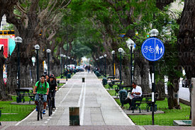 Cycle / pedestrian lane in centre of Avenida Arequipa, Miraflores, Lima, Peru