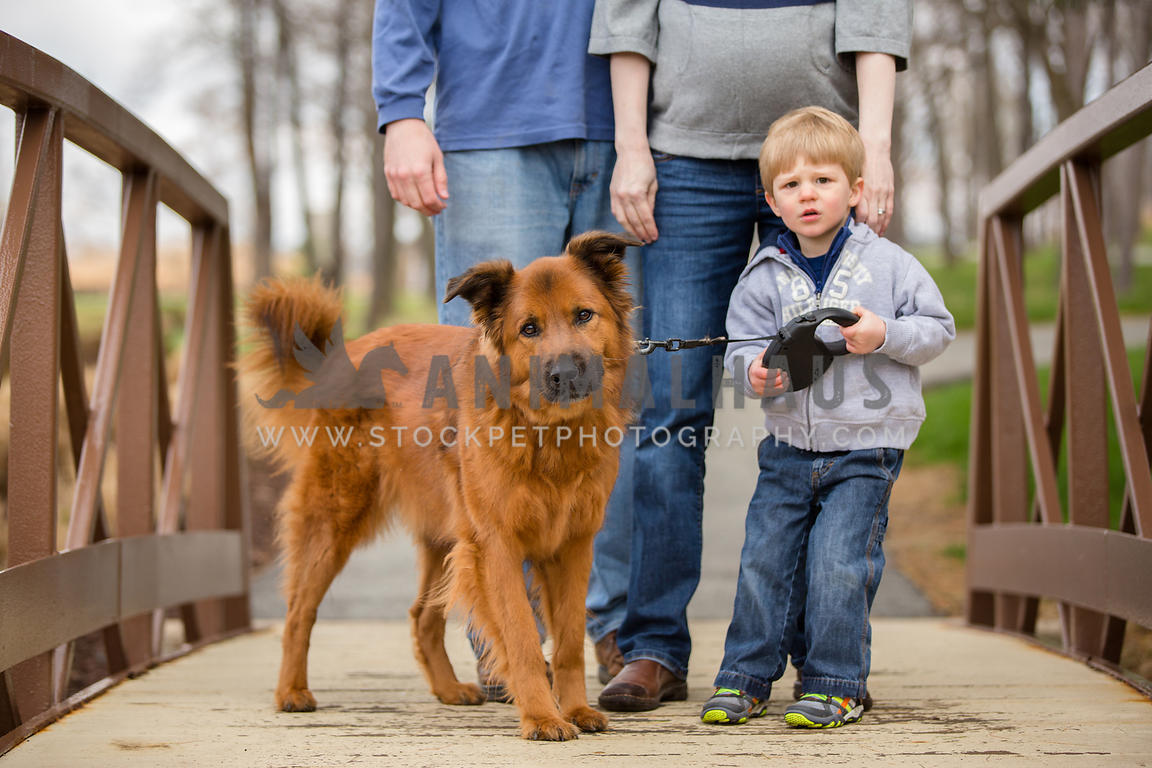 boy trying to hold onto dog