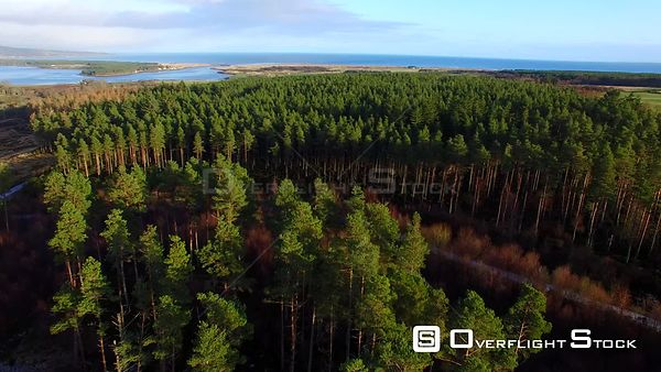 Skelbo Forest and Loch Fleet Sutherland Scotland UK