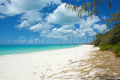 Sandy beach Ouvea island