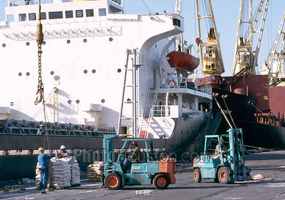Dock workers loading bulk cargo on a ship