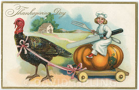 A Thanksgiving postacard depicting a turkey from the USA from the 1900's