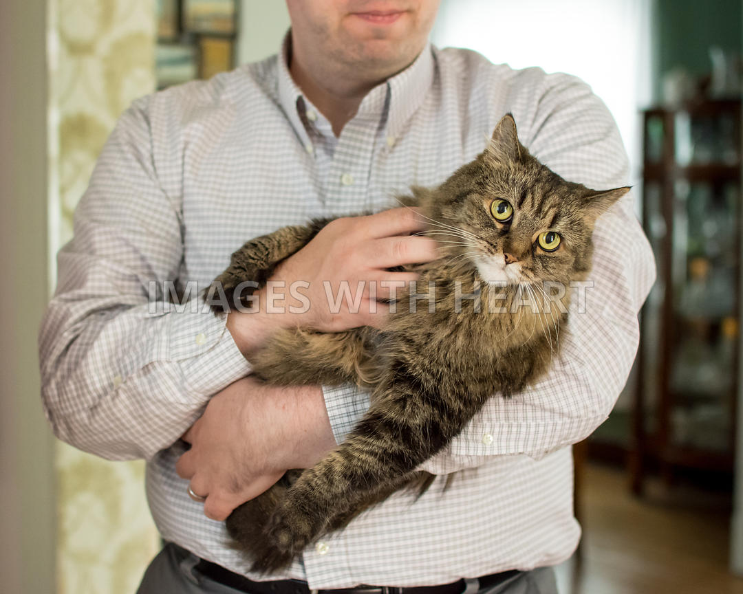 Indoor lifestyle portrait of man holding cat