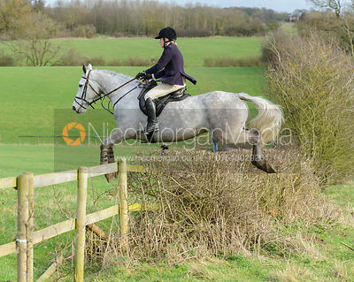 Jane Shears jumping a hedge at Ingarsby