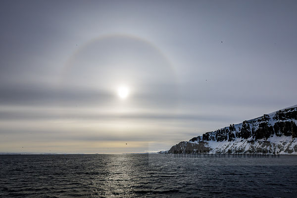 Sun halo above the bird cliff in Svalbard