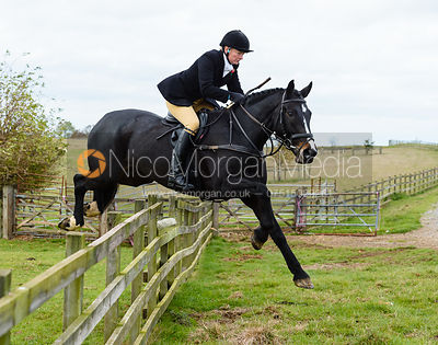 Adrienne Collie jumping a hunt jump at Stone Lodge. The Cottesmore Hunt at Tilton