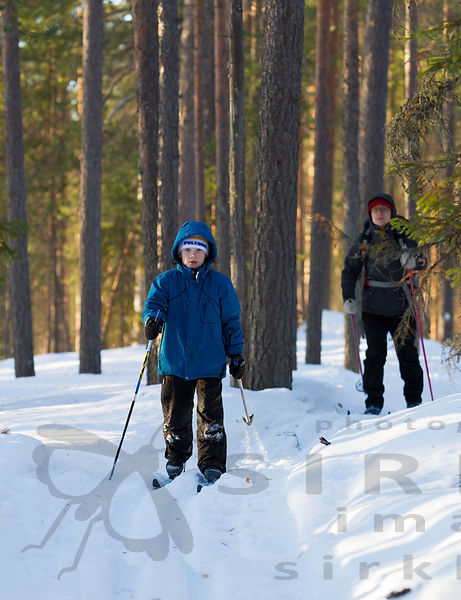 Skiers in Pyhä-Häkki national park