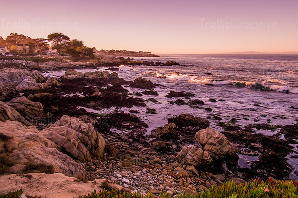 The waves break along the rocky beach of the Monterey coastline