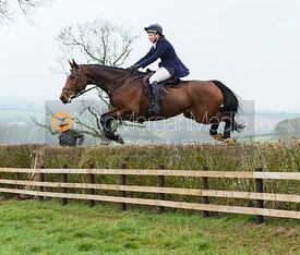 Meghan Healy Jumping a hedge at Peake's. The visit of the Wynnstay Hounds to the Cottesmore 27/11