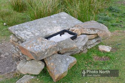 GUNNERSIDE 65A - Red grouse grit tray