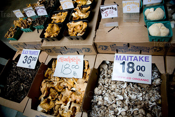 Dried mushrooms for sale at the farmer's market