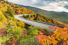 Fall Color At Linn Cove Viaduct