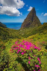 St_Lucia-0171