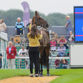 Sophie Jenman and GERONIMO - The first vets inspection (trot up),  Land Rover Burghley Horse Trials, 3rd September 2014.
