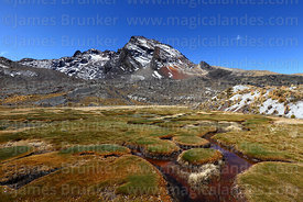 Bofedales and peak near Pampalarama, Cordillera Real, Bolivia