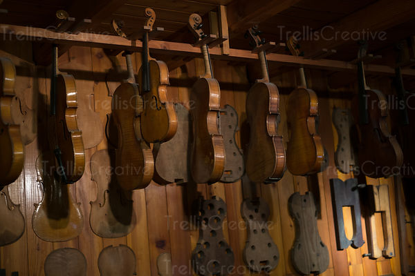 Handcrafted violins and cellos hanging in a music shop