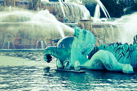 Chicago Buckingham Fountain Seahorse