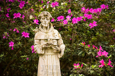 Saint Francis of the Azaleas