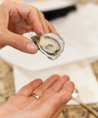 A woman holds up a freshly shucked oyster ready to eat