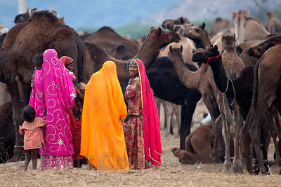 A group of women in colorful saris at the Pushkar Camel Fair, Rajasthan, India