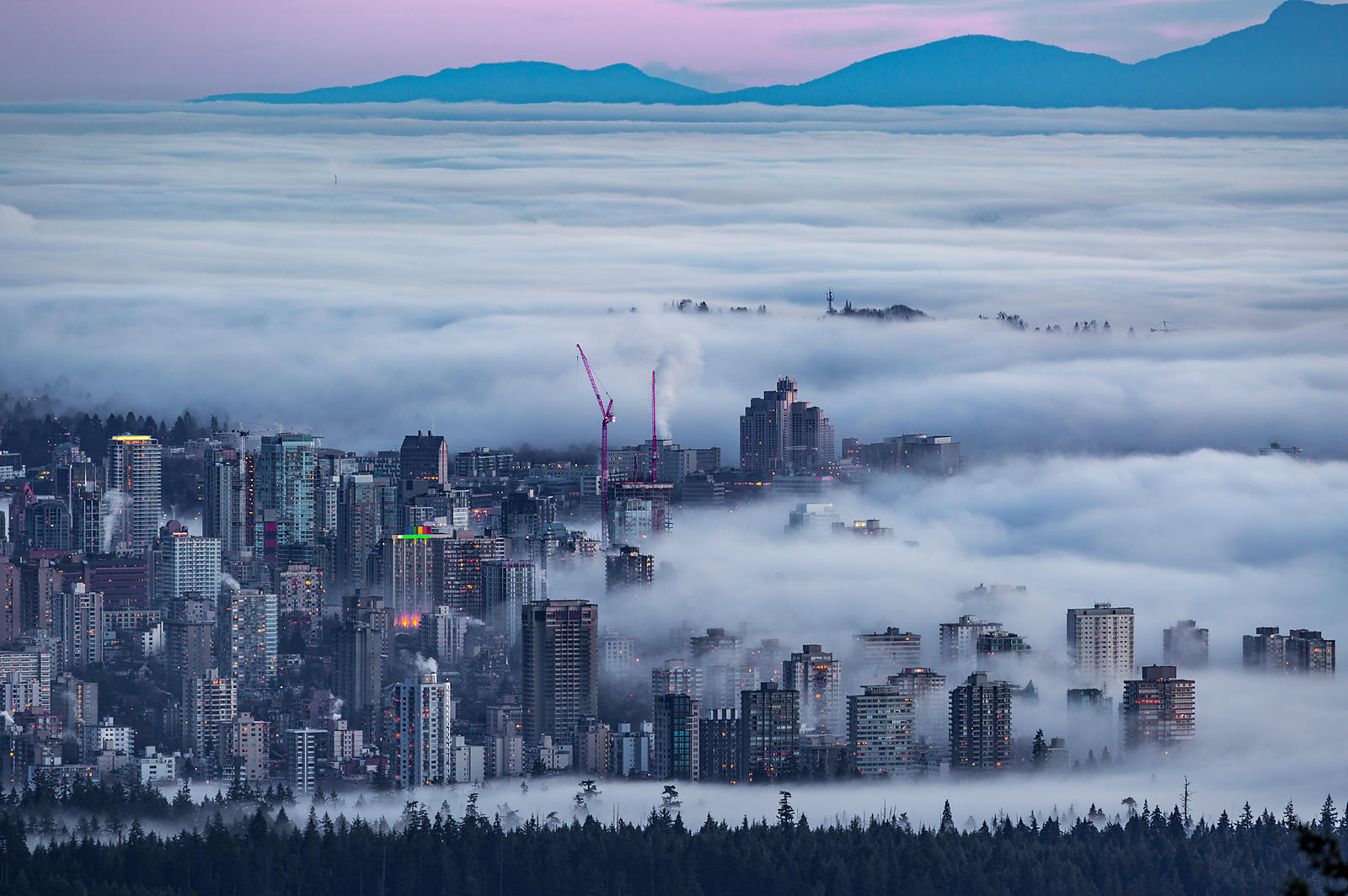 Fog Invades the West End of Vancouver