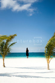 An atmospheric image of  a woman looking out to sea, on a tropical white sandy beach, in the Maldives.