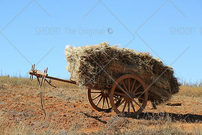 Full loaded hay wagon on hill,Myanmar,Burma