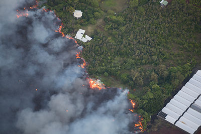 Lava flowing through lower Puna into Kapoho, destroying agricultural properties and burning trees and structures