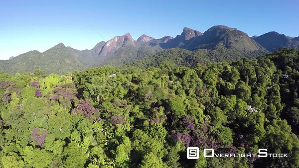 Aerial shot ascending through an area of the Atlantic Forest, Reserva Ecologica de Guapiacu, Rio de Janeiro, Brazil, 2015.